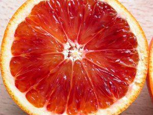Giống cam cho năng xuất cao màu sắc đẹp