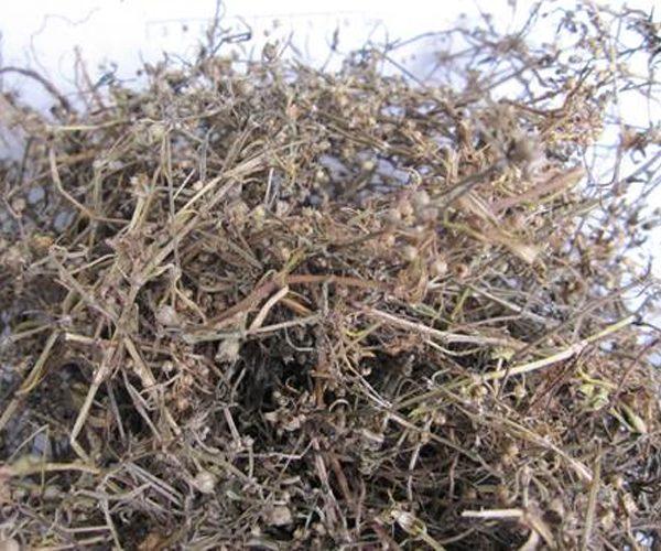 Dừa cạn khô nguyên chất