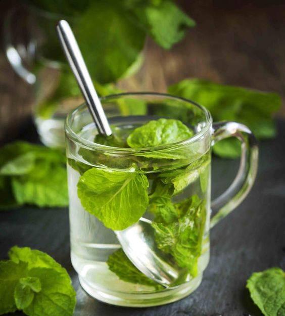 Detox bạc hà giảm béo