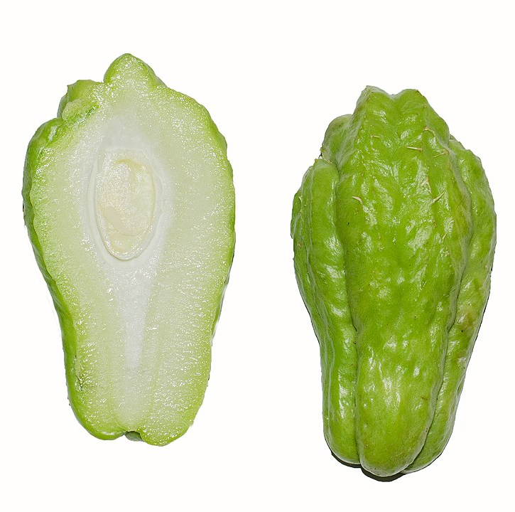 1080px Chayote Cross Section Bnc (1)